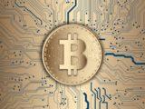 Terms of bitcoin?